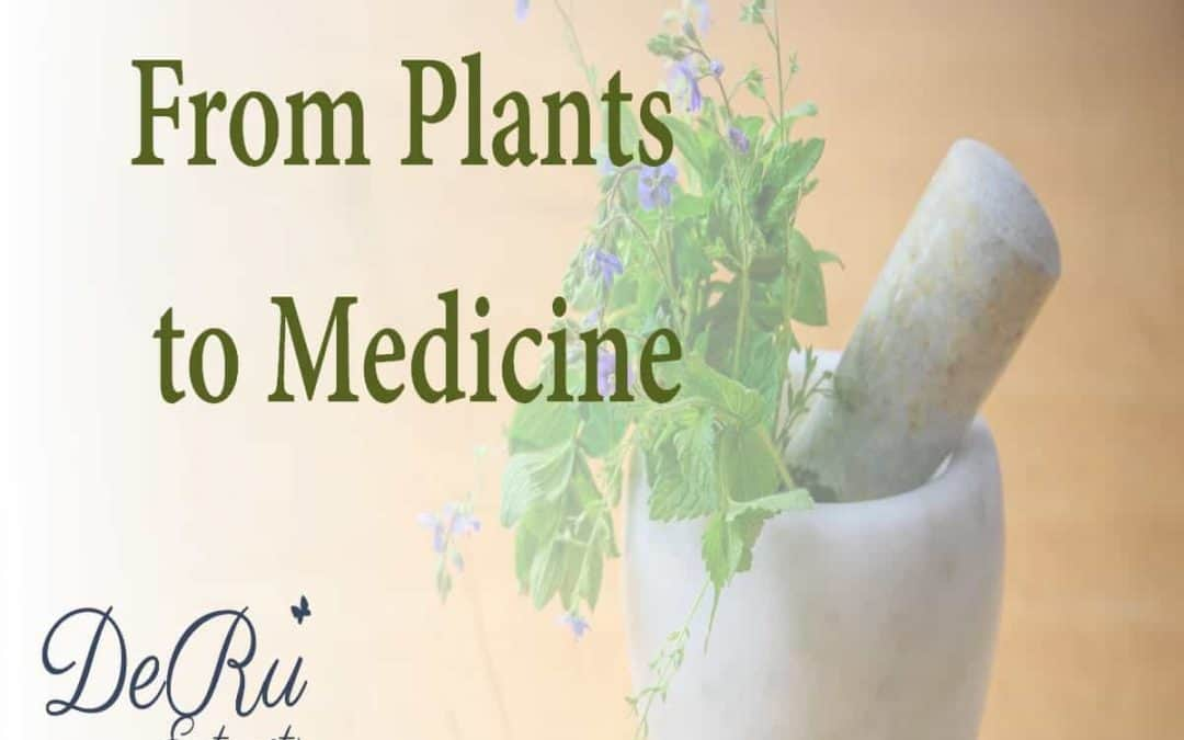 Fun Fact Friday – From Plants to Medicine