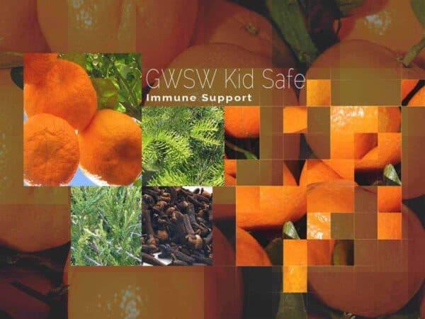 GWSW Kid Safe